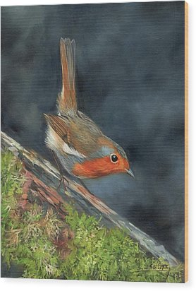Wood Print featuring the painting Robin by David Stribbling