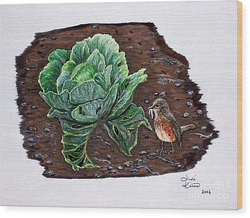 Robin In The Gardin Wood Print by Judy Kirouac