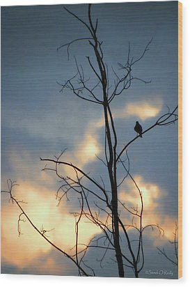 Wood Print featuring the photograph Robin Watching Sunset After The Storm by Sandi OReilly