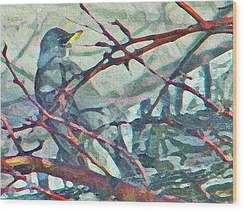 Robins Impression Of Spring Wood Print