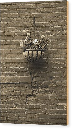 Wood Print featuring the photograph Rochester, New York - Wall And Flowers Sepia by Frank Romeo