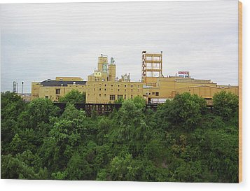 Wood Print featuring the photograph Rochester, Ny - Factory On A Hill by Frank Romeo