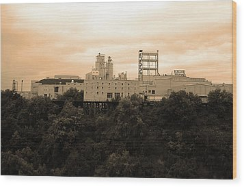 Wood Print featuring the photograph Rochester, Ny - Factory On A Hill Sepia by Frank Romeo