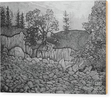 Wood Print featuring the drawing Rock Beach by John Stuart Webbstock
