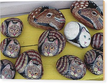 Rock Cats And Fawns Wood Print by Barbara Griffin