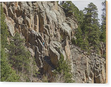 Wood Print featuring the photograph Rock Climbers Paradise by James BO Insogna