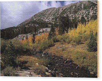 Rock Creek Fall Color Wood Print by Don Kreuter