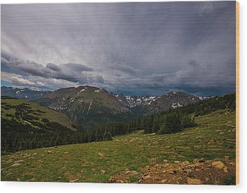 Rock Cut 3 - Trail Ridge Road Wood Print by Tom Potter