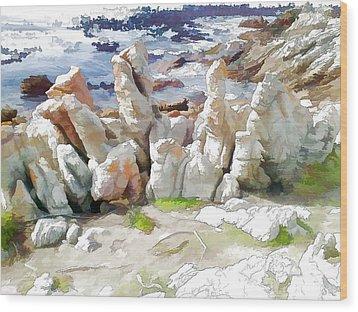 Rock Formation Bettys Bay Wood Print by Jan Hattingh