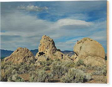 Wood Print featuring the photograph Rock Formations At Pyramid Lake by Benanne Stiens