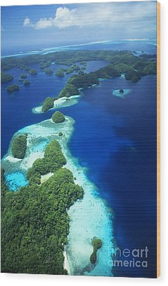 Rock Islands Aerial Wood Print by Allan Seiden - Printscapes
