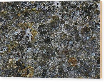 Rock Lichen Surface Wood Print