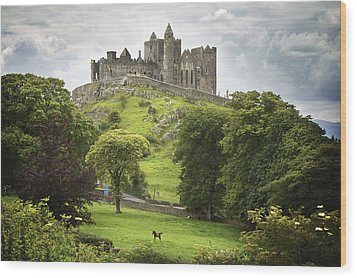 Rock Of Cashel Cashel County Tipperary Wood Print by Patrick Swan