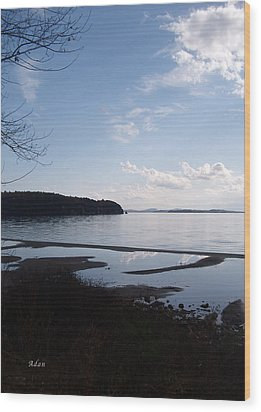 Wood Print featuring the photograph Rock Point North View Vertical by Felipe Adan Lerma