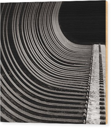 Wood Print featuring the photograph Rock Rake by Susan Capuano
