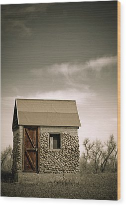Rock Shed Wood Print by Marilyn Hunt