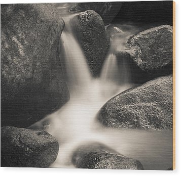 Wood Print featuring the photograph Rock Star by Tom Vaughan