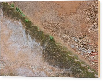 Wood Print featuring the photograph Rock The Kasbah by Ramona Johnston