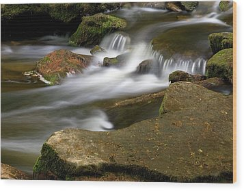 Rock Water And Moss Wood Print by Timothy McIntyre