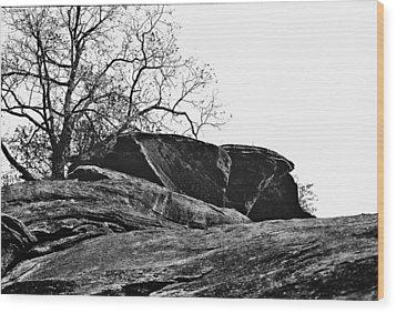 Rock Wave Wood Print by Steve Karol