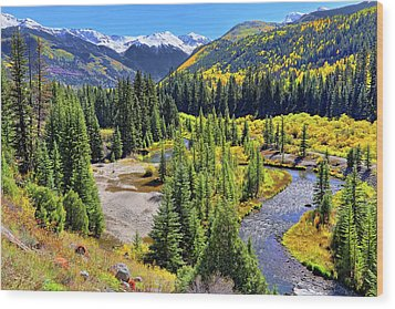 Rockies And Aspens - Colorful Colorado - Telluride Wood Print by Jason Politte