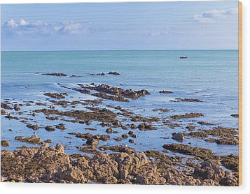 Rocks And Seaweed And Seagulls In The Irish Sea At Howth Wood Print by Semmick Photo