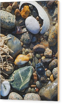 Rocks And Shells Wood Print by Charles Harden
