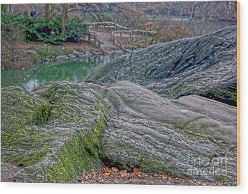 Rocks At Central Park Wood Print