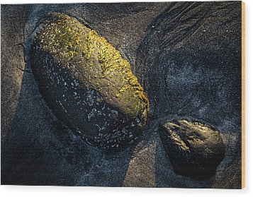 Wood Print featuring the photograph Rocks From Talisker Beach 1 by Davorin Mance