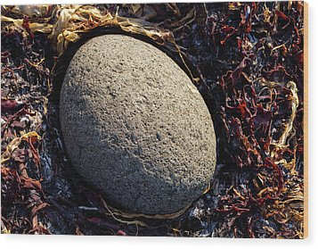 Wood Print featuring the photograph Rocks From Talisker Beach 4 by Davorin Mance