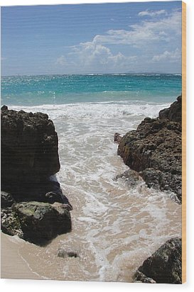 Wood Print featuring the photograph Rocky Beach In The Caribbean by Margaret Bobb