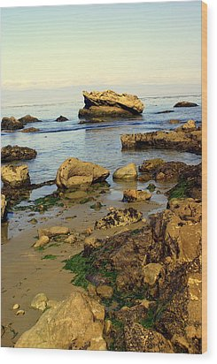 Rocky Beach Wood Print by Marty Koch