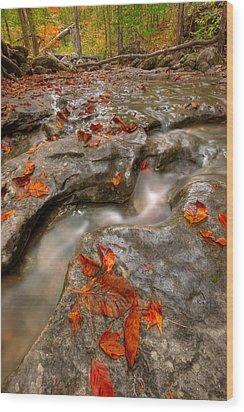 Rocky Creek Wood Print by Ryan Heffron