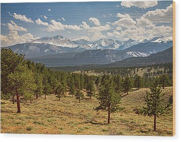 Wood Print featuring the photograph Rocky Mountain Afternoon High by James BO Insogna