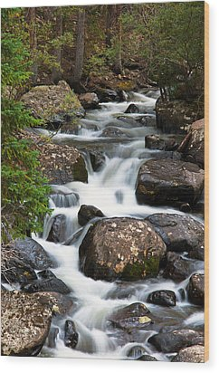 Rocky Mountain National Park Cascade  Wood Print by The Forests Edge Photography - Diane Sandoval