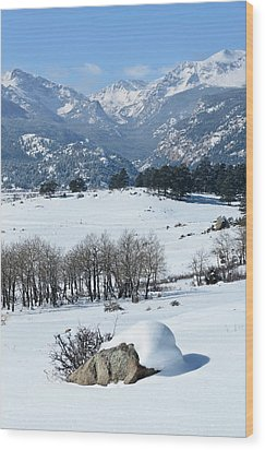 Rocky Mountain National Park Wood Print by Julie Rideout