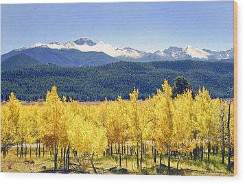 Rocky Mountain Park Colorado Wood Print by James Steele