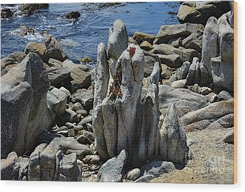 Wood Print featuring the photograph Rocky Remains At Carmel Point by Susan Wiedmann