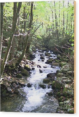 Wood Print featuring the mixed media Rocky Stream 6 by Desiree Paquette