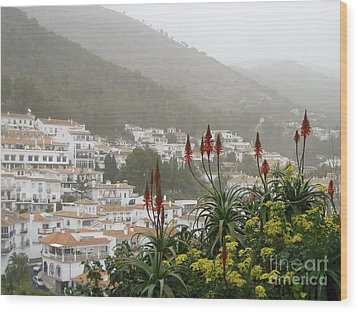 Rojo In The Pueblos Blancos Wood Print by Suzanne Oesterling