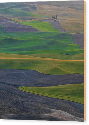 Rolling Fields Of The Palouse Wood Print by James Hammond