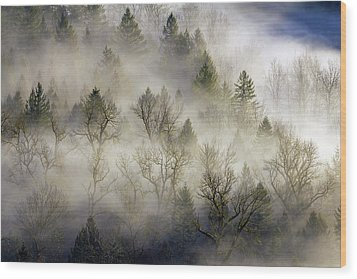 Rolling Fog In Sandy River Valley Wood Print by David Gn
