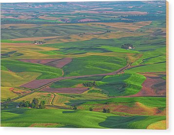 Rolling Green Hills Of The Palouse Wood Print by James Hammond