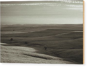 Wood Print featuring the photograph Rolling Hills Toned by Thomas Bomstad