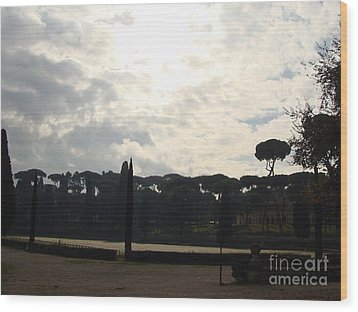 Roma, Villa Borghese Wood Print