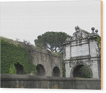 Wood Print featuring the photograph Roman Aqueduct by Manuela Constantin