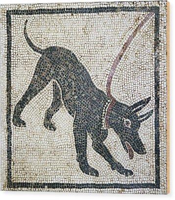 Roman Guard Dog Mosaic Wood Print by Sheila Terry