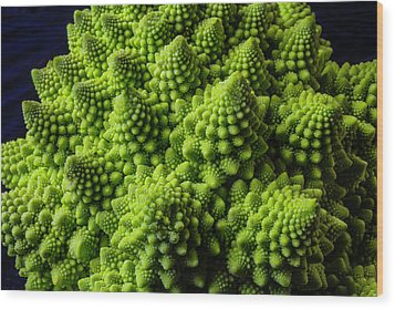 Romanesco Broccoli Wood Print