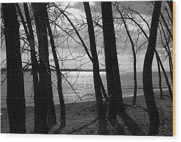 Wood Print featuring the photograph Romantic Lake by Valentino Visentini