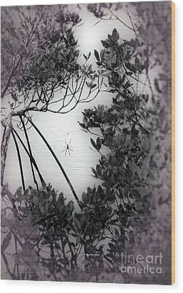 Wood Print featuring the photograph Romantic Spider by Megan Dirsa-DuBois
